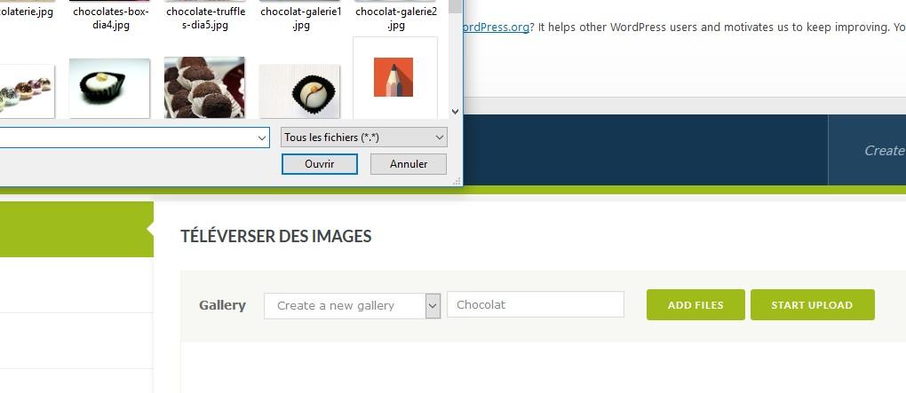 NextGen:insérer une image